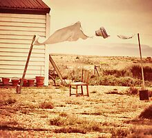 Wash Day in Dungeness by Nicola Smith