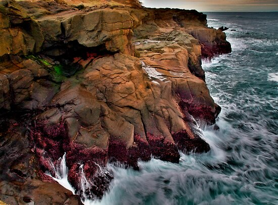 Dive In ~ Boiler Bay ~ by Charles & Patricia   Harkins ~ Picture Oregon