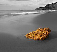 Gold Nugget - Jan Juc Beach Victoria  by Graeme Buckland