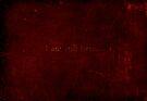 I am still here. by David North
