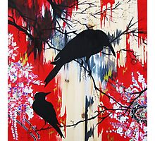 black birds 1 Photographic Print