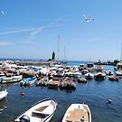 Flying High, The Port of Giglio 2007 by ArleneMartine