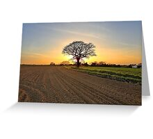 A Sunset Silhouette Greeting Card