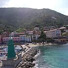 Giglio, The Port of Giglio, 2010 by ArleneMartine