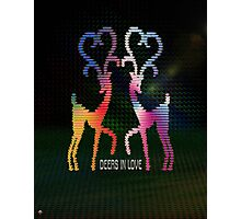 Deers In Love - 01 Photographic Print