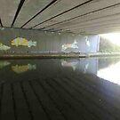 Bridge Murals by Steven Mace
