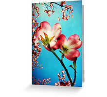 Blooms of the Dogwood Greeting Card