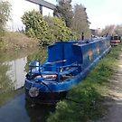 Canal Boat by Steven Mace