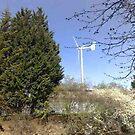 The Turbine by Steven Mace