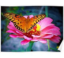 Welcoming Spring/Butterfly and flower Poster