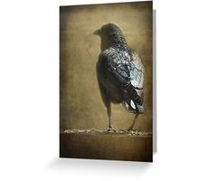 Ravens and Robins' Seeds Greeting Card