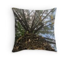 Looking up the Tree Throw Pillow