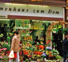 flower shop, Vienna, Austria Sticker