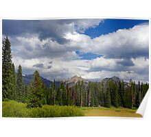 Teton National Forest Poster