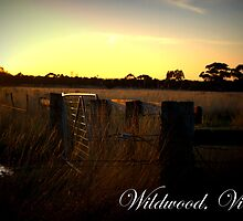 Wildwood Country, Victoria by Madgee