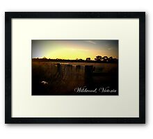Wildwood Country, Victoria Framed Print