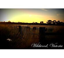 Wildwood Country, Victoria Photographic Print