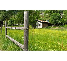 cabin in the grass Photographic Print