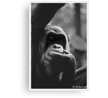 In the shadows of an orang Canvas Print