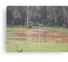 Rubyvale Qld rising flood waters Canvas Print