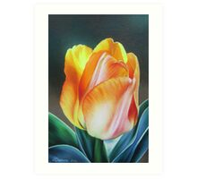Spring yellow tulip Art Print