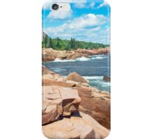 Rocky Summer Seascape Acadia National Park  iPhone Case/Skin