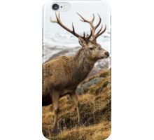 Royal Red Deer Stag in Winter iPhone Case/Skin