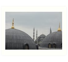 Two Mosques Art Print