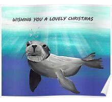 """''Seal Swim"""" Poster"""