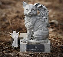 Roo's Angel Kitty by ibjennyjenny