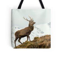 Red Deer Stag in Winter Tote Bag