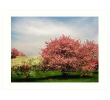 Spring-Arie den Boer Crab Apple Arboretum Art Print