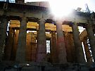 Sun Flare at the Parthenon by Nevermind the Camera Photography