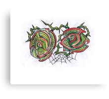 Money Roses and Spider web Canvas Print