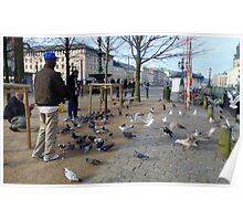 People Feeding Birds One Early Morning In the City of Gothenburg Poster