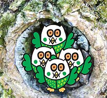 Four Green Owlets by Kirsty  Holton