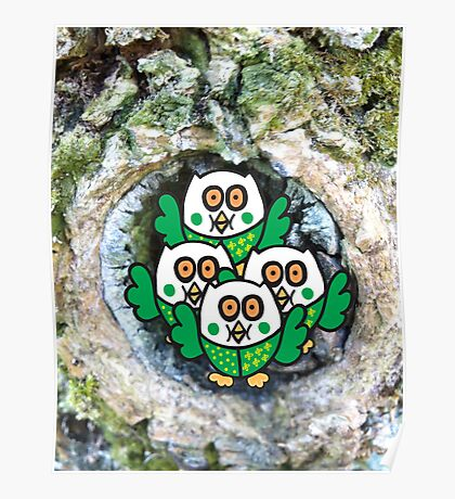 Four Green Owlets Poster