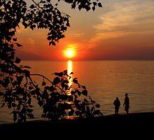 Evening Silhouttes by Greta  McLaughlin