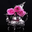 Pink roses by torishaa