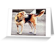 I'd like to introduce you to Tyge Greeting Card