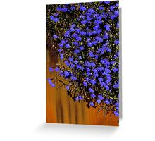 The World Is A Colorful Wonder ~ Part Fourty-Five Greeting Card