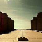 SALK INSTITUTE by Laura E  Shafer
