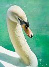 Swan Sparkle by KBritt