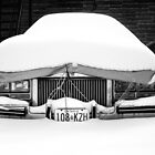 Snow on Car by Paul Politis