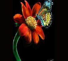 Both Beauty by Deborah Vicino