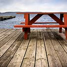 Red Picnic Table by Paul Politis