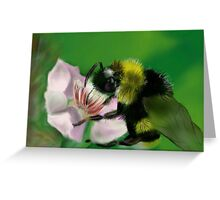 BUM BUM BUMBLE BEE Greeting Card