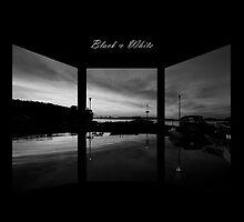 Black & White by DigitallyStill