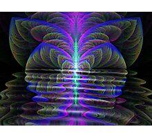Twisted Lake Photographic Print