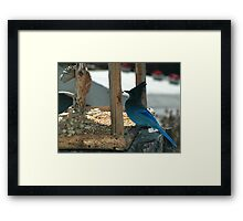""""""" Blue Thief of the Mountains """" Framed Print"""